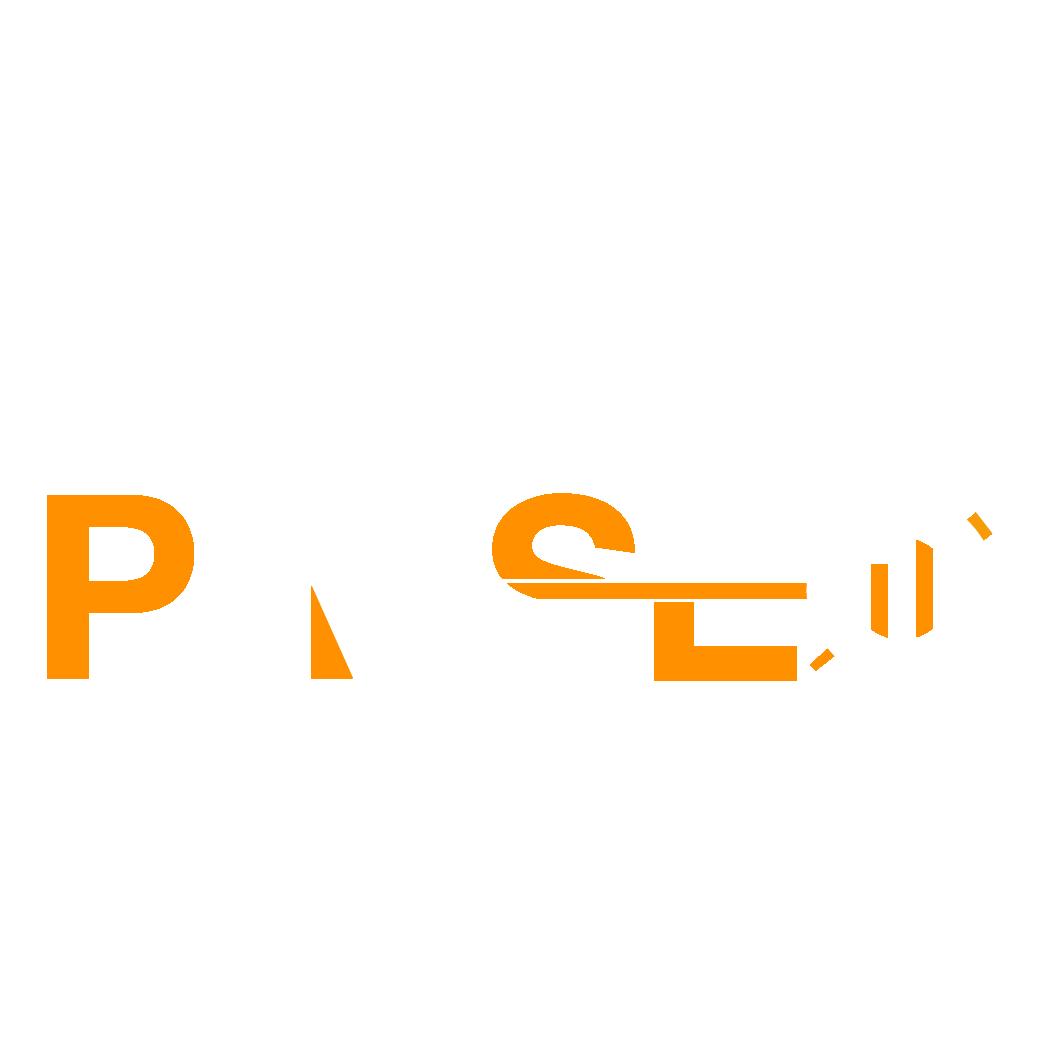 PAKSEO FOOTER LOGO